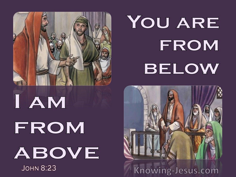 John 8:23