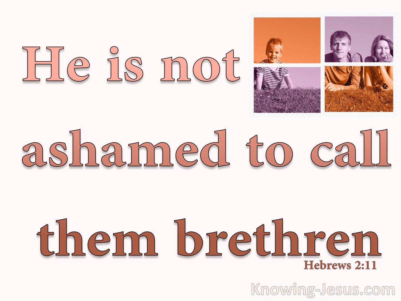 Hebrews 2:11