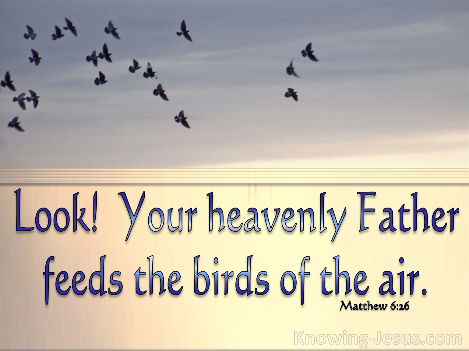 What Does Matthew 6:26 Mean?