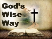 God's Wise Way