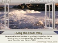Living the Cross Way