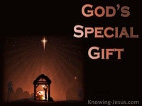 God's Special Gift - Perfect MAN Eternal SON (3)
