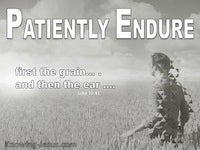 Patiently Endure