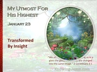 Transformed By Insight