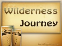Wilderness Journey - Man's Nature and Destiny (13)