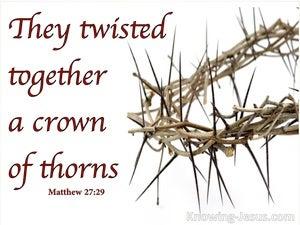 Matthew 27:29