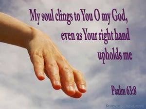 Psalm 63:8