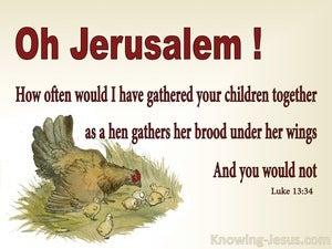 Luke 13:34