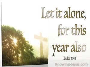 Luke 13:8