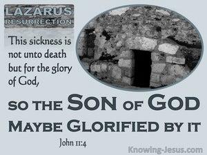 John 11:4