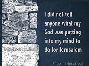 Nehemiah 2:12