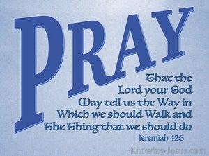 Jeremiah 42:3