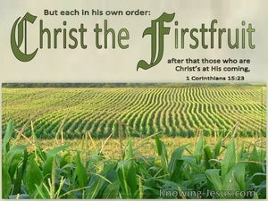 1 Corinthians 15:23