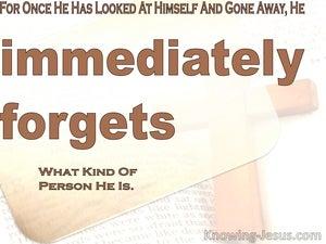 James 1:24