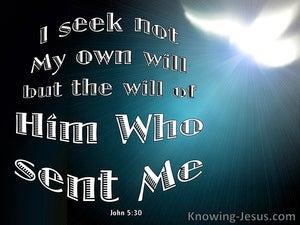 John 5:30