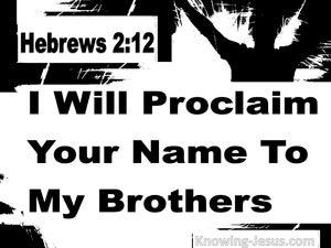 Hebrews 2:12