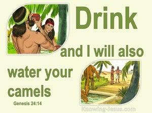 Genesis 24:14