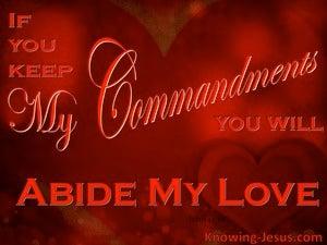 John 15:10