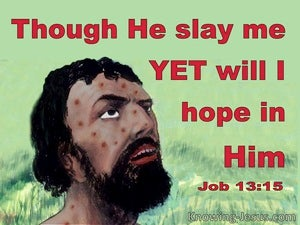 Job 13:15