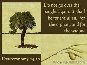 Deuteronomy 24:20