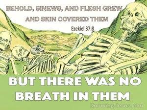 Ezekiel 37:8
