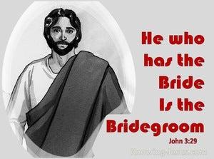 John 3:29