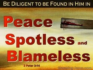 2 Peter 3:14