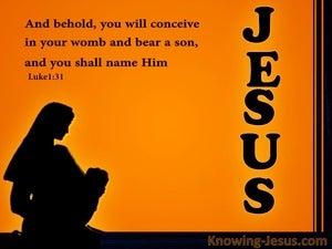 Luke 1:31