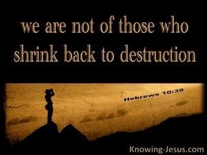 Hebrews 10:39
