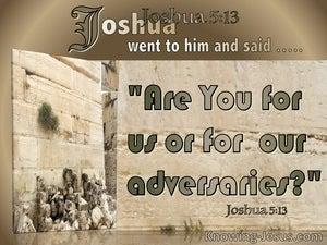 Joshua 5:13