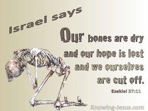 Ezekiel 37:11