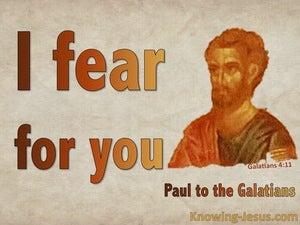 Galatians 4:11
