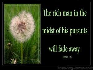 James 1:11