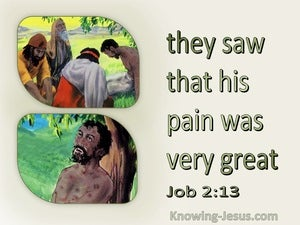 Job 2:13