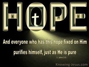 1 John 3:3