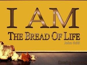John 6:35