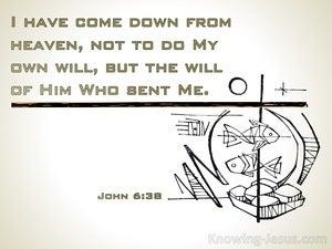 John 6:38