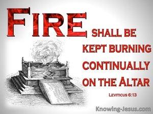 Leviticus 6:13