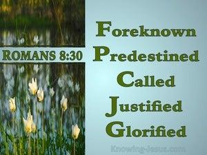 Romans 8:30