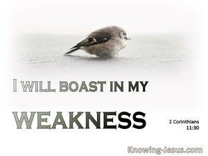 2 Corinthians 11:30