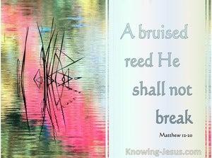 Matthew 12:20