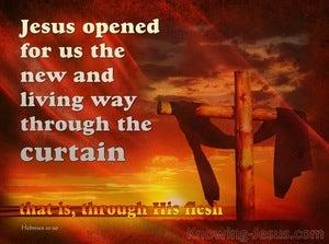 Hebrews 10:20
