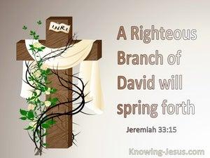 Jeremiah 33:15