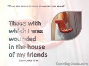 Zechariah 13:6