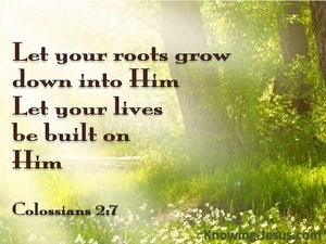 Colossians 2:7