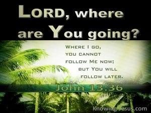 John 13:36