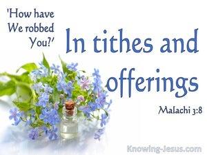Malachi 3:8