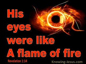 Revelation 1:14
