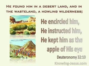 Deuteronomy 32:10