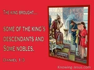 Daniel 1:7